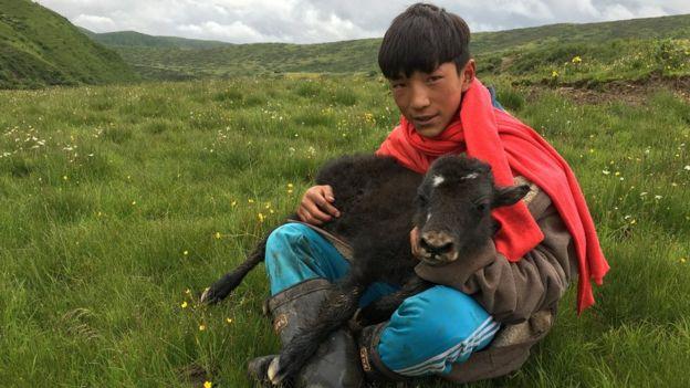 Beaucoup de nomades se sentent profondément connectés à leurs animaux et à la terre.