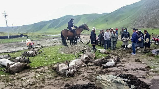Figure-1-Mud-flood-in-Tsolho-where-dozens-of-wild-animals-washed-away-in-the-mud